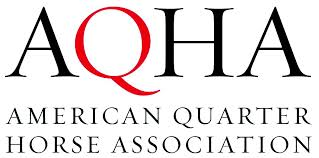 American Quarter Horse Association scholarship