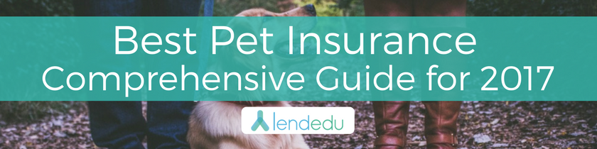 Best Pet Insurance - Comprehensive Guide for 2017