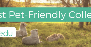 25 most pet-friendly colleges