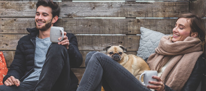 More Employers are Offering Pet Insurance Benefits in 2017