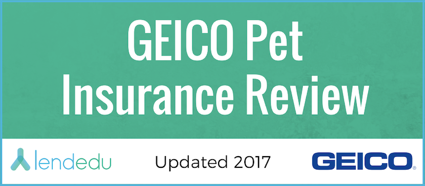 geico pet insurance review lendedu. Black Bedroom Furniture Sets. Home Design Ideas
