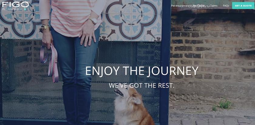 Figo Pet Insurance Homepage