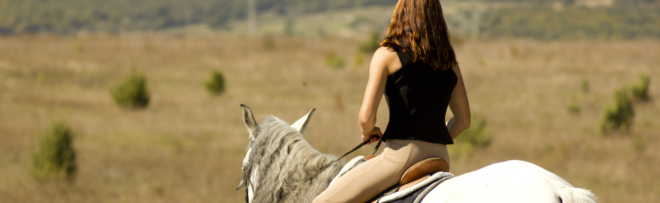 Horse Loans - Equine Financing