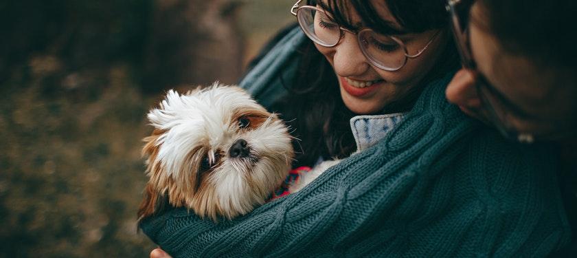 Pet Ownership Cost Statistics