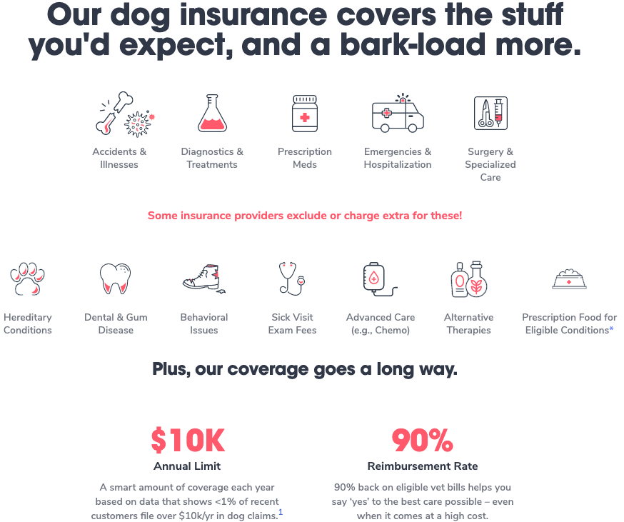 Pumpkin Dog Insurance Coverage
